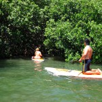 SUP in mangroves with Keys Boat Tours