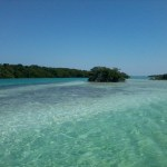 keys boat tours paddleboard rental - Expedition of a Lifetime