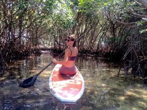 Girl kneeling on a paddlebard, paddling into the mangroves