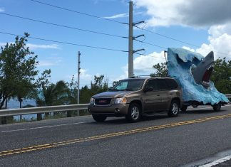 SHARK! Massive sculpture makes move to Marathon - A truck is parked on the side of a road - Luxury vehicle