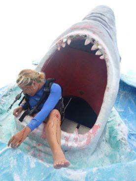 0714 shark2