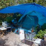 Wisteria Island: It's complicated - A person in a tent - Wisteria Island
