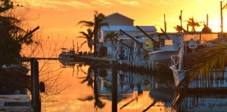 Big Pine Key Canal cleanup