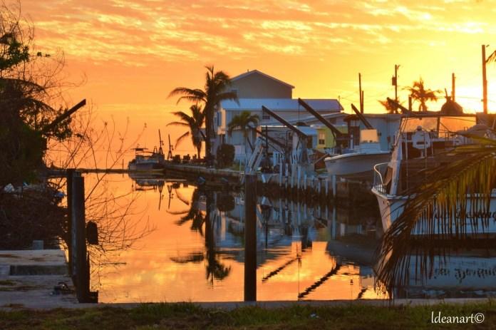Big Pine Key Canal cleanup