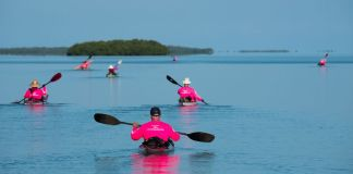 Need a tribe? - A group of people rowing a boat in a body of water - Sea kayak