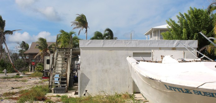 AN AMAZING 'SLIDE SHOW' - A small boat in a yard - Palm trees