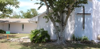 - A tree in front of a house - Tree