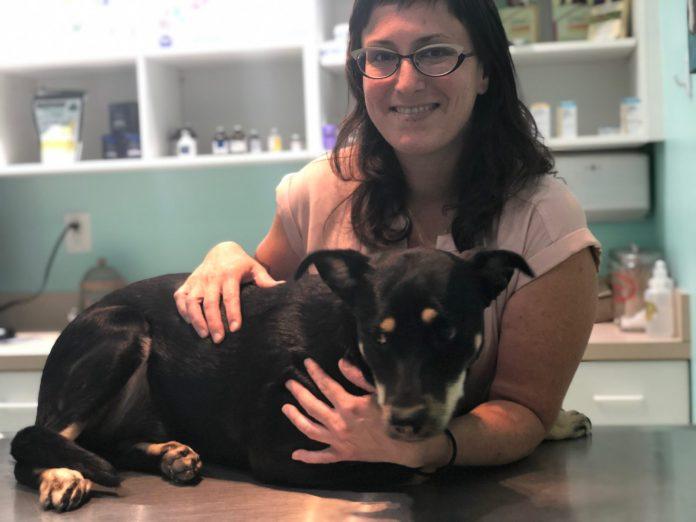 Keys Animal Hospital welcomes Shavonne Corbet - A woman holding a dog - Florida Keys