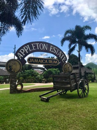 Jamaica in 24 Hours: An island adventure in a day - A group of people sitting on a bench in a park - Appleton Estate