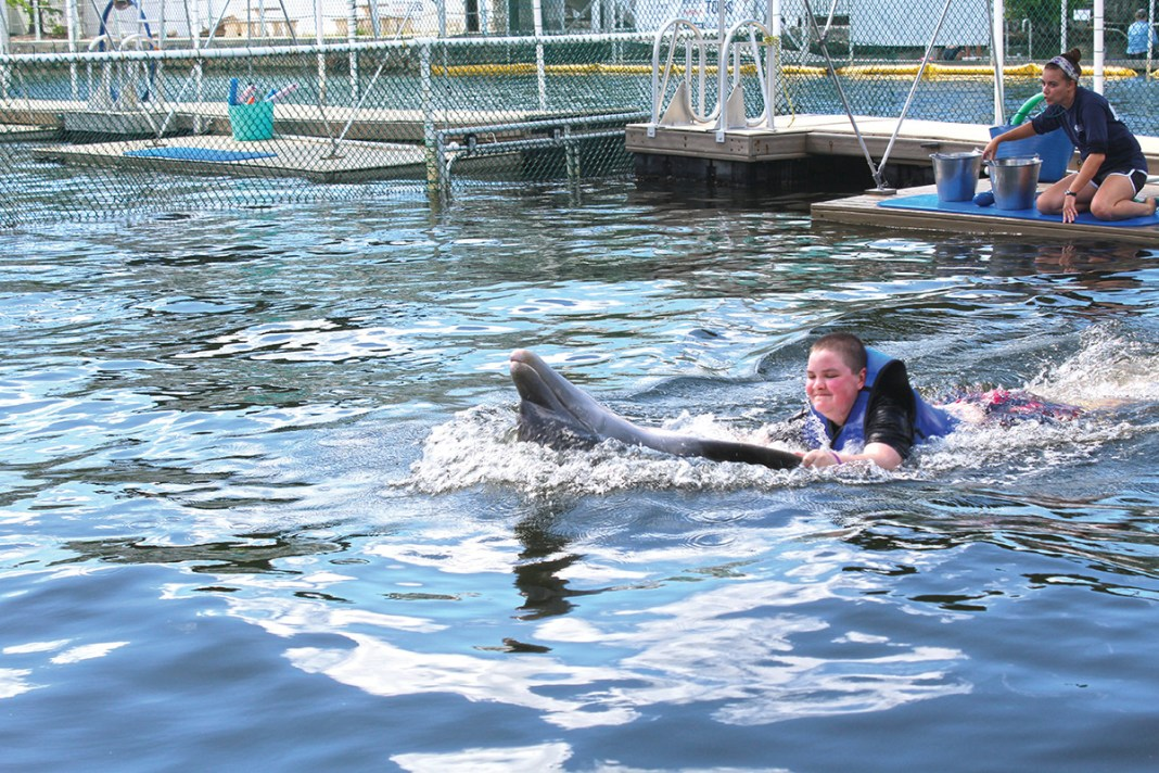 Boy gets wish granted at DPMMR - A group of people riding on the back of a boat in the water - Common bottlenose dolphin