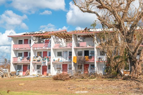 Keys Weekly photographer documents Bahamas plight - A tree in front of a building - Florida Keys