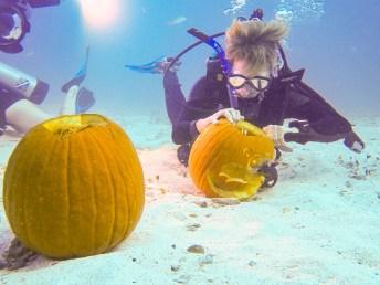 Pumpkin carving Key Largo