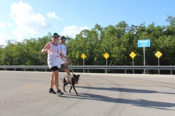 PINK ARMY – Inaugural bra walk in Key Largo sees large support - A man riding a skateboard up the side of a road - Ultramarathon