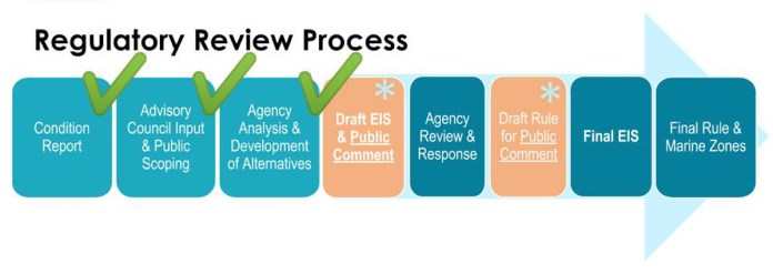 Review Process Graphic