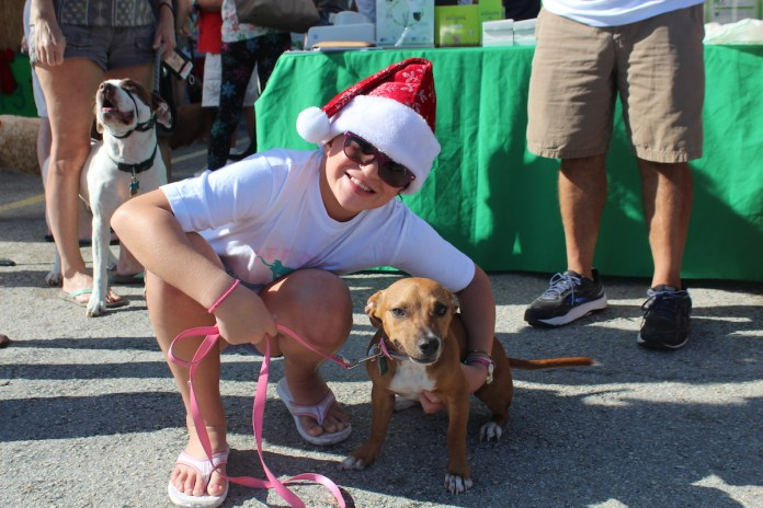 A Doggone Good Time - A woman holding a dog on a leash - Dog