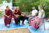 The monks were sought out by many throughout their visit for personal blessings. At Island Dolphin Care, the monks blessed pets and people who came by. Blessings can be for anything, from a general house blessing to a prayer to remove obstacles. TIFFANY DUONG/Keys Weekly