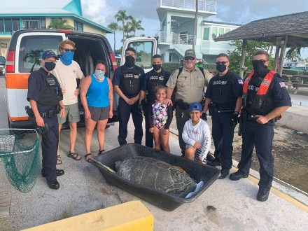 A team effort results in the successful rescue of Shelly, a 266-pound green sea turtle in the Middle Keys on July 9. ROBERT DUBE/Contributed