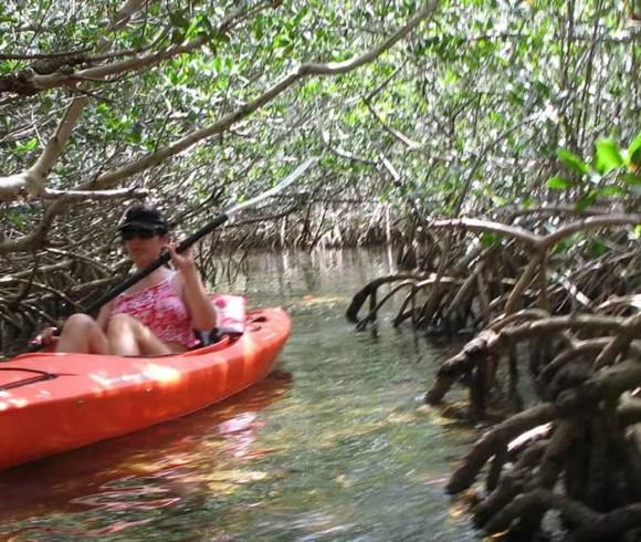 Kayak Landing / Launch