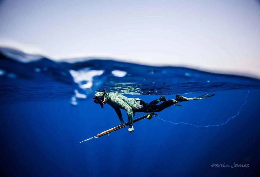 Key West Spear Fishing 4