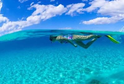 Key West Snorkeling - Tropics