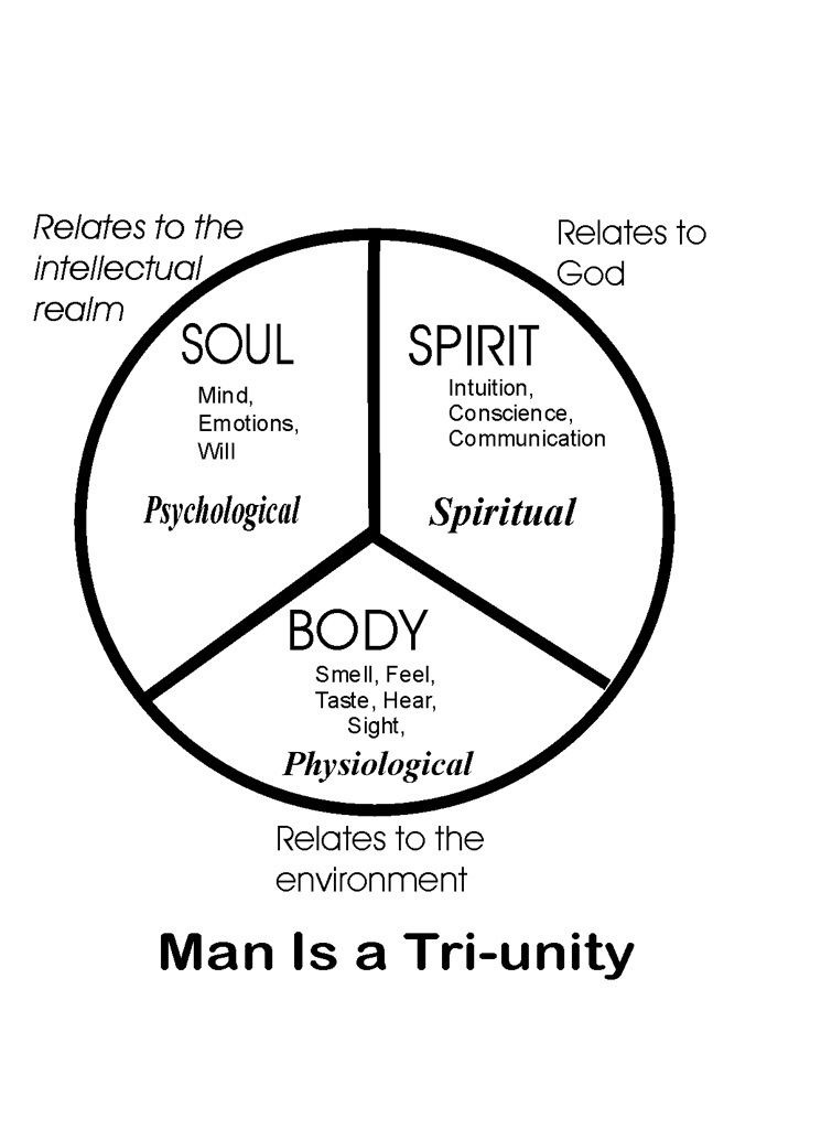 The Temple Of The Holy Spirit Definition
