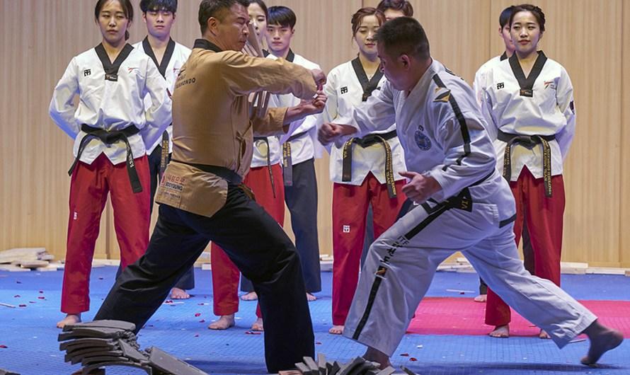 """Demostración conjunta de ITF y """"Taekwondo mundial"""""""