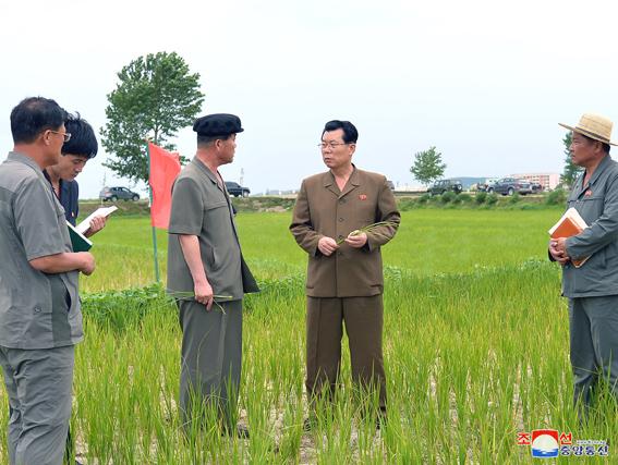Visita del primer ministro a granjas agrícolas