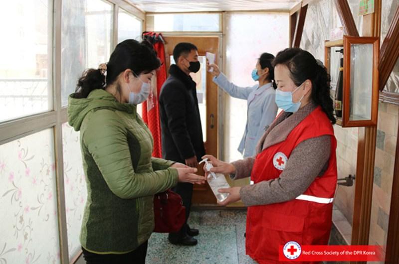 Acciones de la Cruz Roja en la RPDC