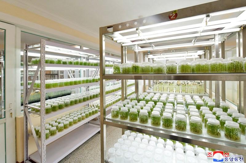 Nuevas instalaciones dedicadas a las ciencias.