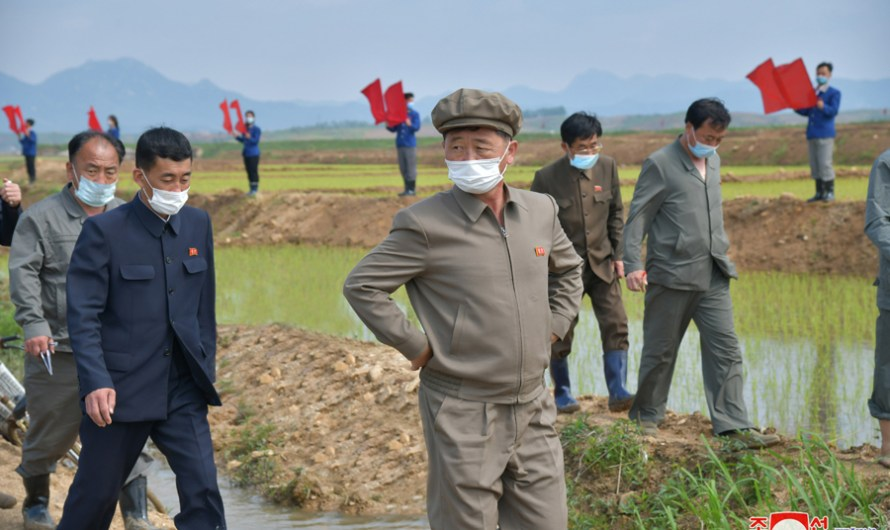 Primer ministro supervisa zonas agricolas.