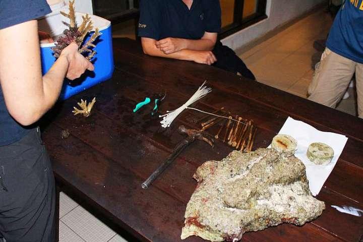 CoralDoctors_Workshop_PracticalLesson_02