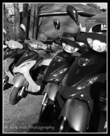 Scooters lined up eager to take on the streets of OOB.