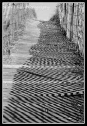 Afternoon sun casts shadows on the boardwalk, Dune Street, Ocean Park,