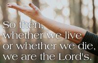 Romans 14 Proper 19