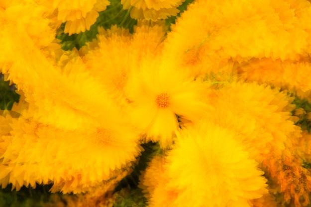 130621_YellowZoomTwist by Karl Graf.