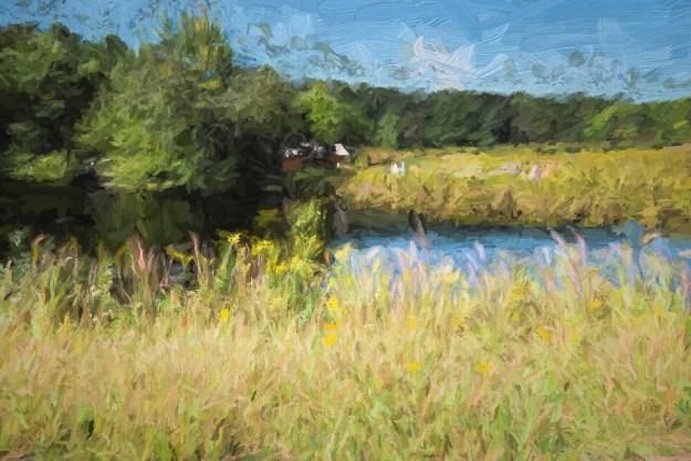 140930_Longwood Meadow #4a by .