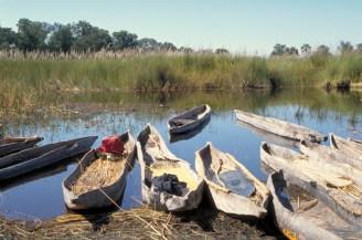 Ovakango Delta, Botswana
