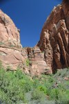 Looking back up at the trail we just descended