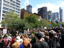 Crowds gather at the State Library