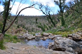 Walk from MacKenzie Falls to Fish Falls