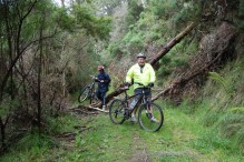 Obstacle on the Walhalla Goldfields Rail Trail