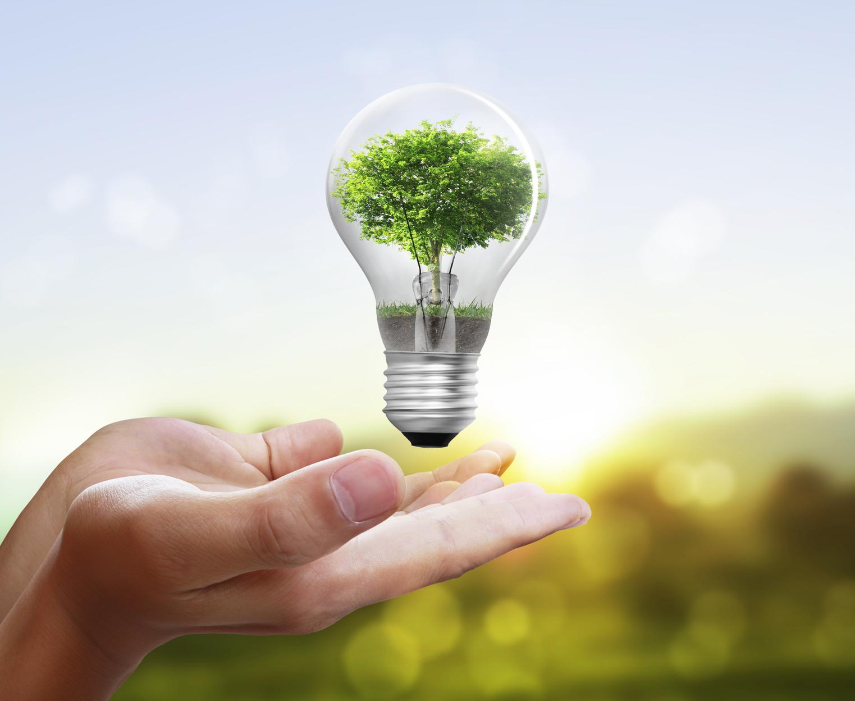 Thermostat Light Bulb Heater