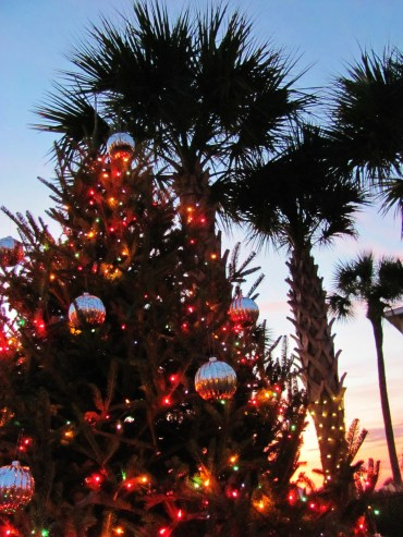 Christmas and Palm Trees