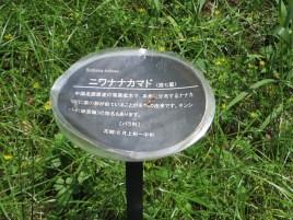 ニワナナカマド 標識