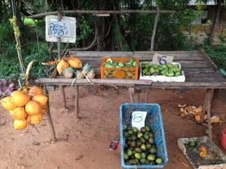 パインアップル 道路わきで売られている果物(パイン・ココナッツなど)