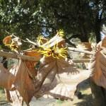 シナマンサク 枯れた葉を付けながら咲いているシナマンサク