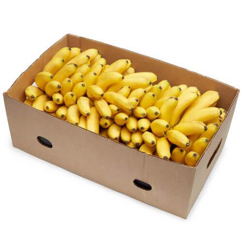 Equal ExchangeFair Trade Organic Bananas, Case
