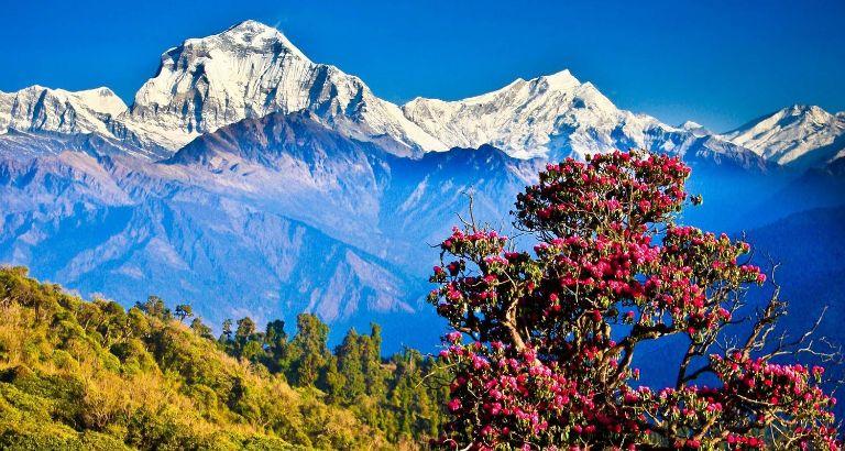 10 DAYS - Wonderful Nepal tour