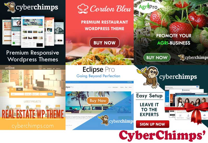 CyberChimps Responsive Theme Review