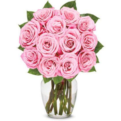 Dozen Pink Roses in a Bouquet